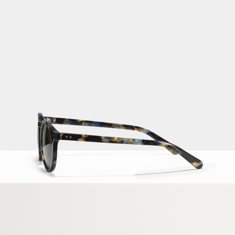 Ace & Tate Sunglasses | round acetate in Blue, Brown