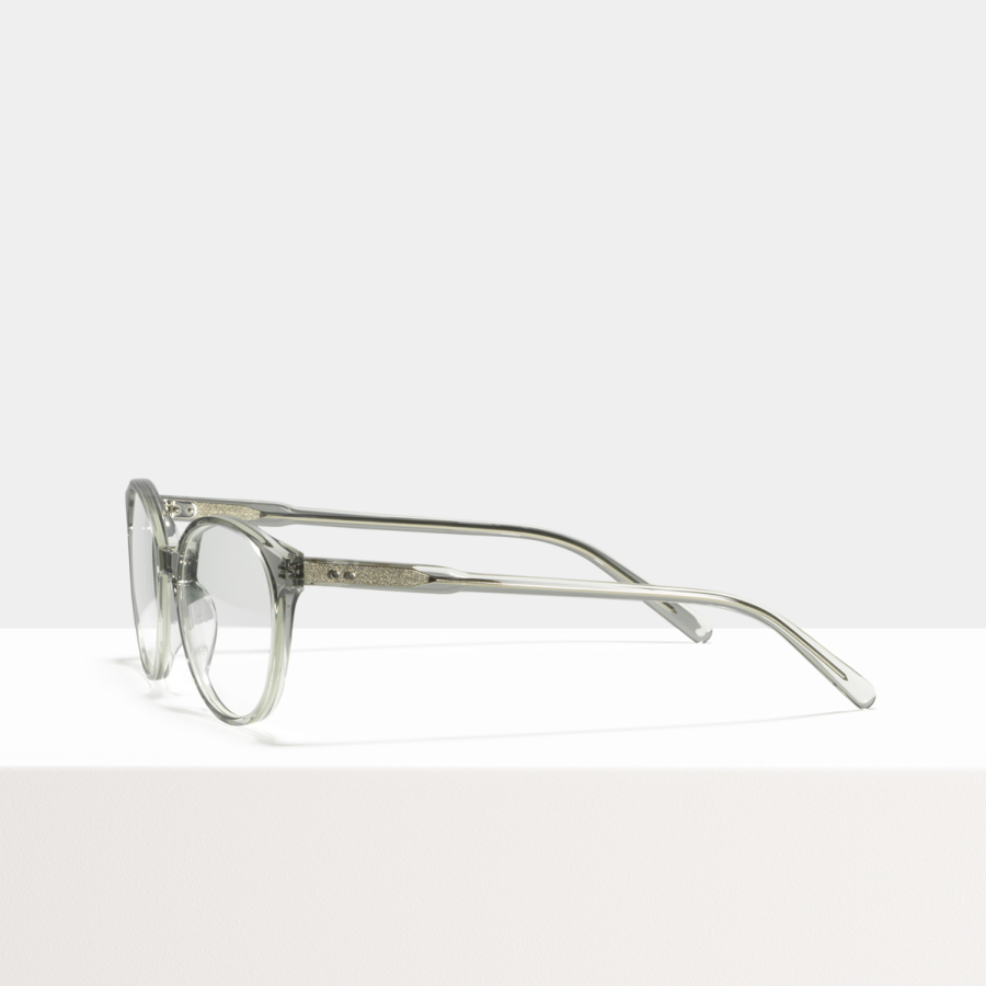 Ace & Tate Glasses |  acetate in Clear, Grey