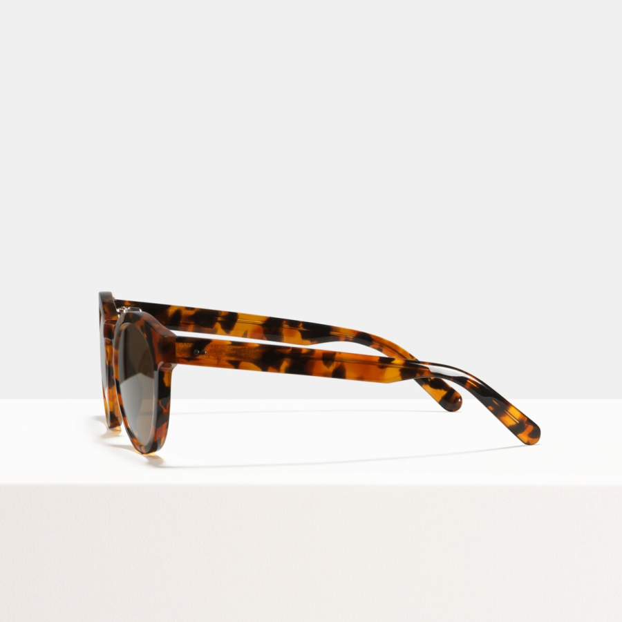Ace & Tate Sunglasses | round acetate in Black, Brown, Orange, Red