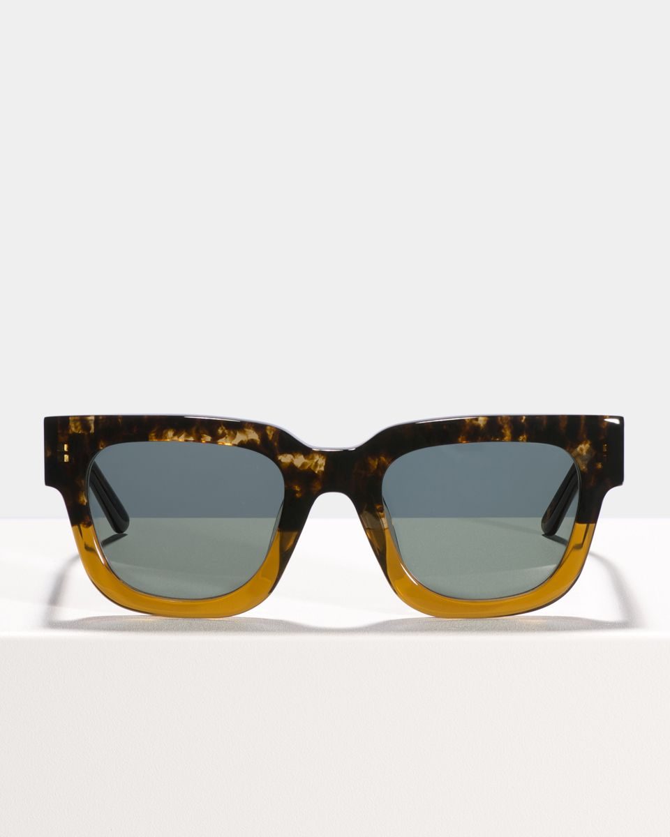Allen rund Acetat glasses in Butterscotch by Ace & Tate