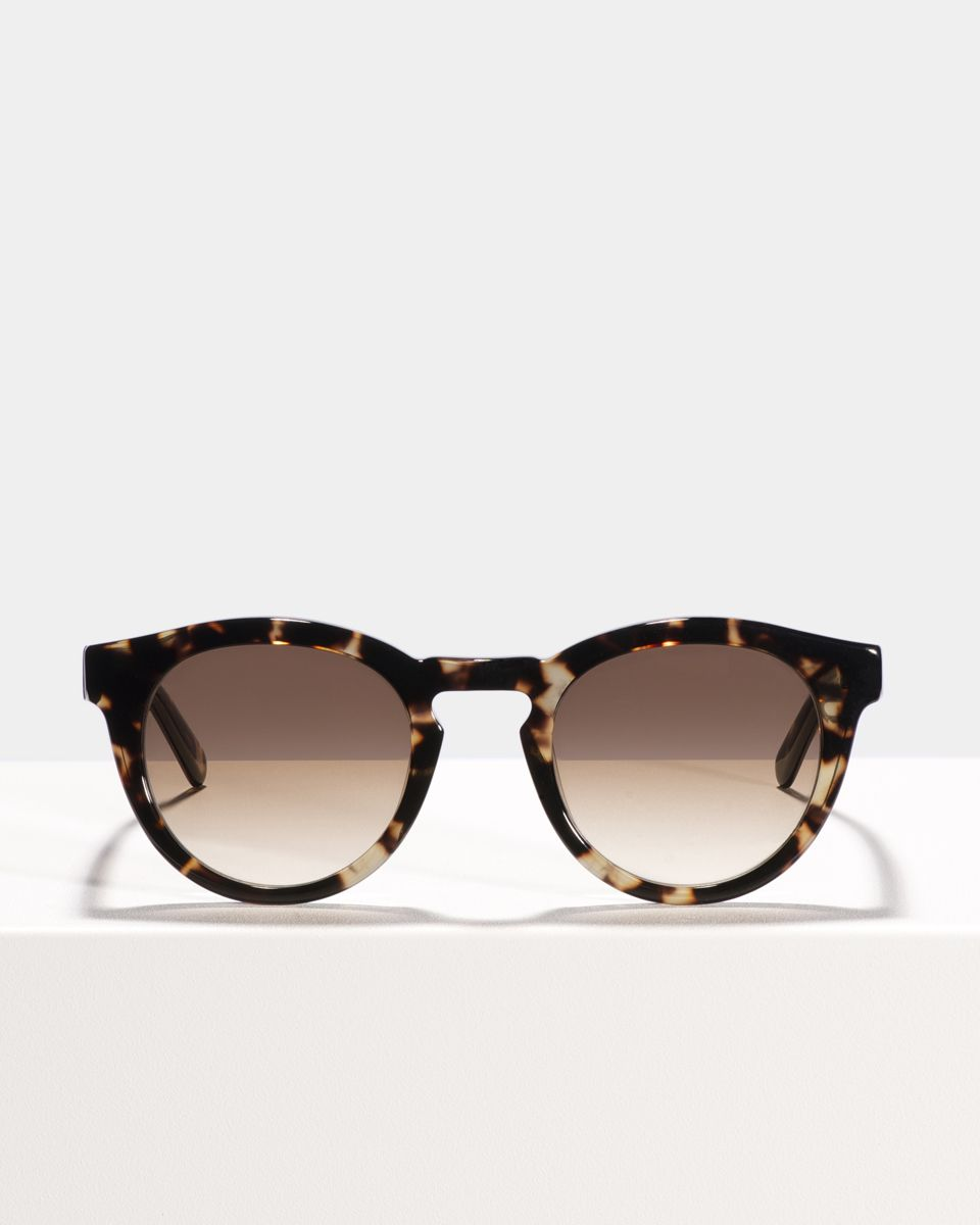 Byron square acetate glasses in Sugar Man by Ace & Tate