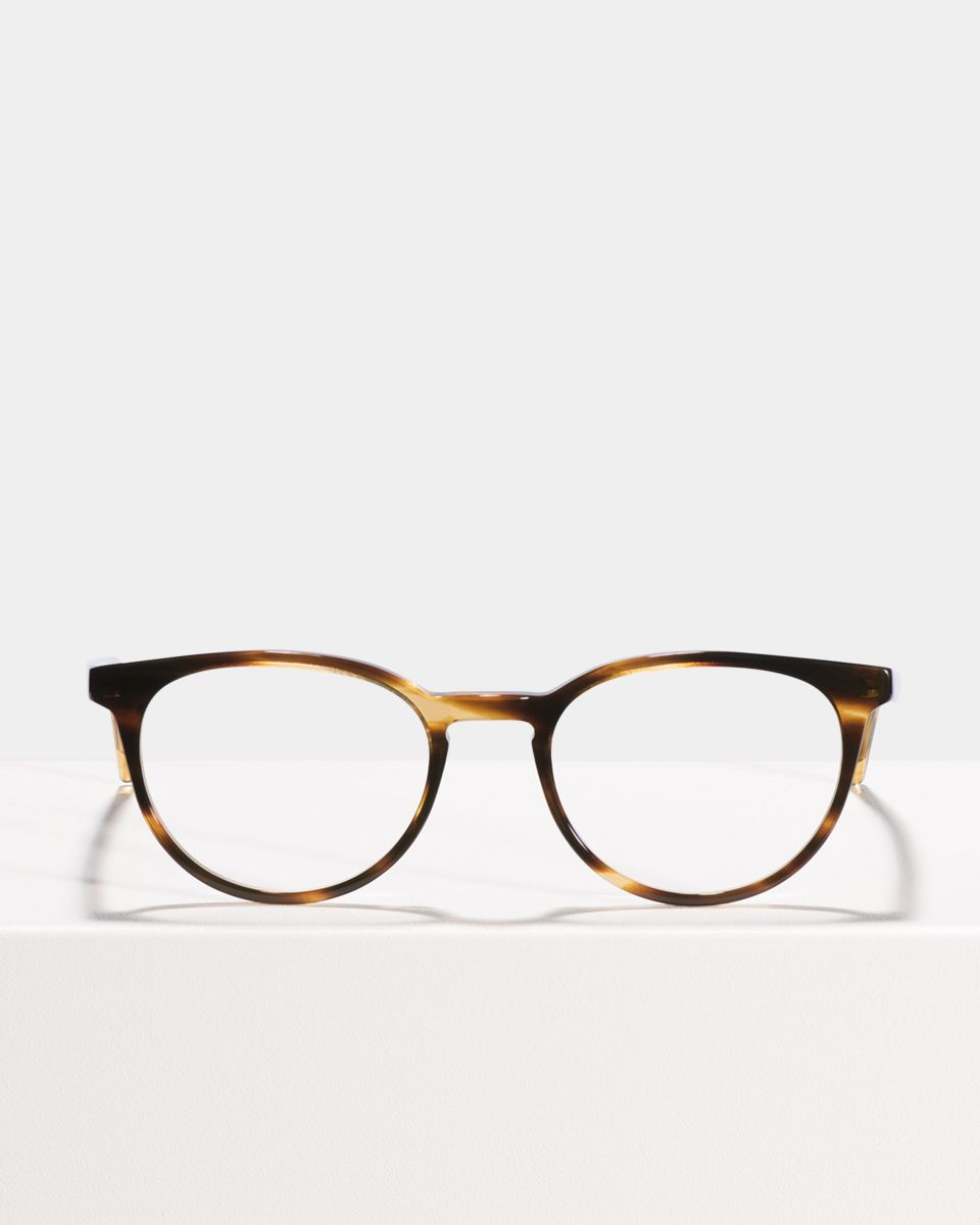 Damien rund Acetat glasses in Tiger Wood by Ace & Tate