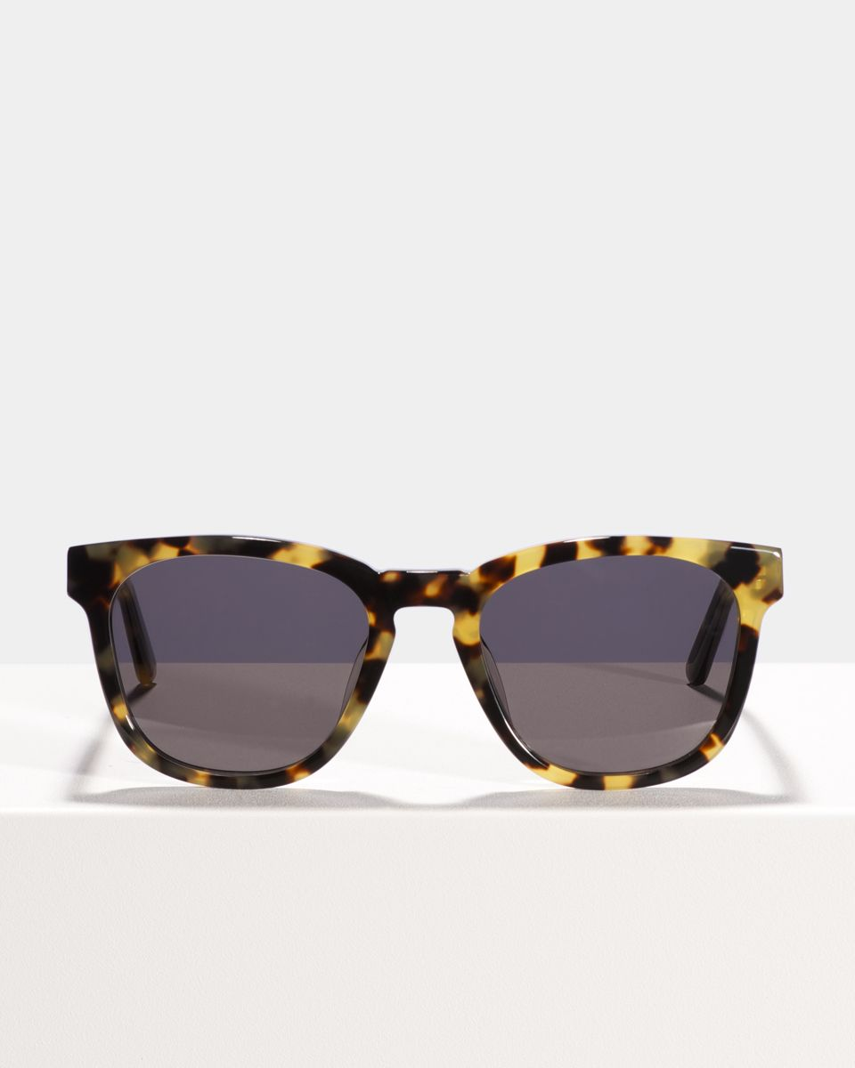 Dexter square acetate glasses in Bananas by Ace & Tate