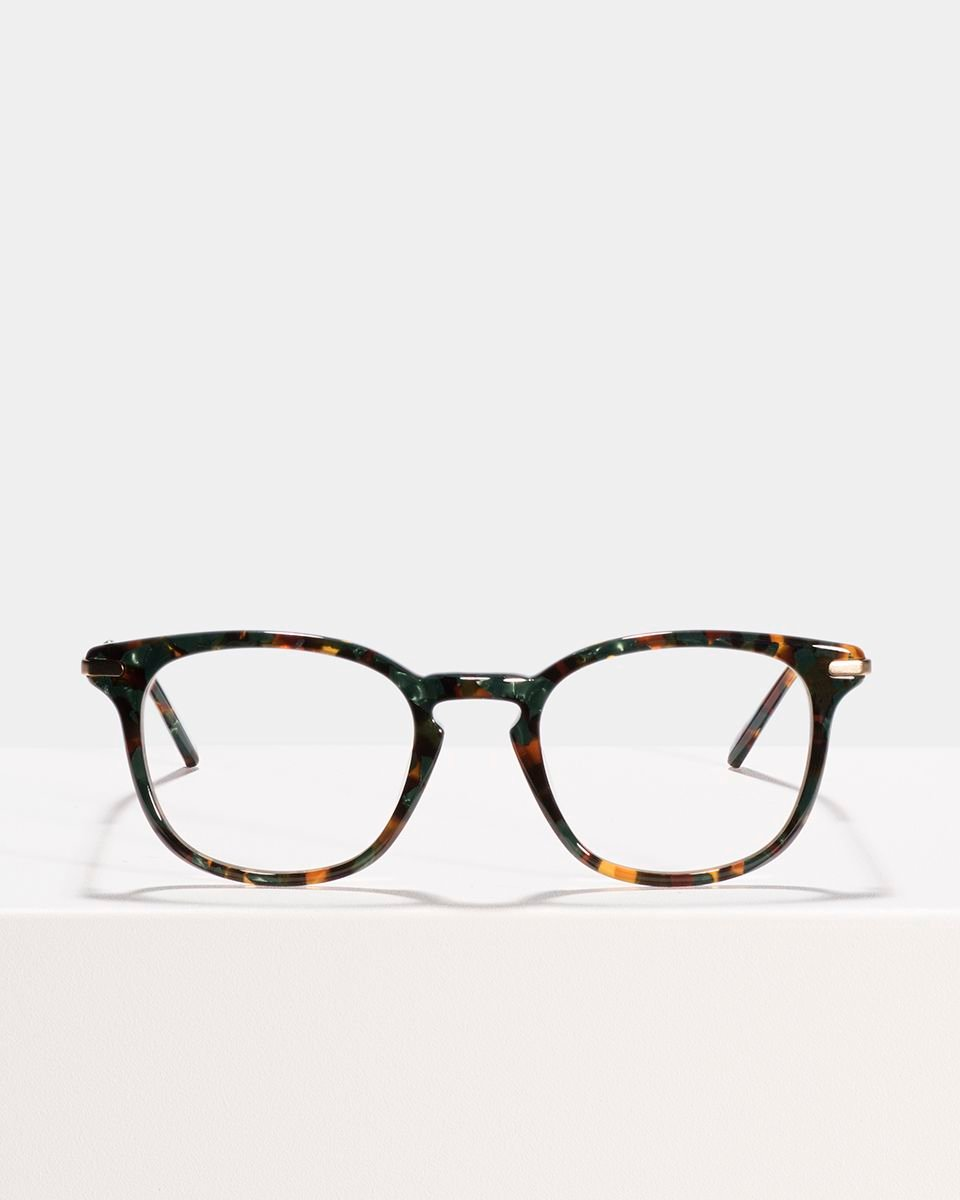 Dylan carrée combinaison glasses in Peacock by Ace & Tate