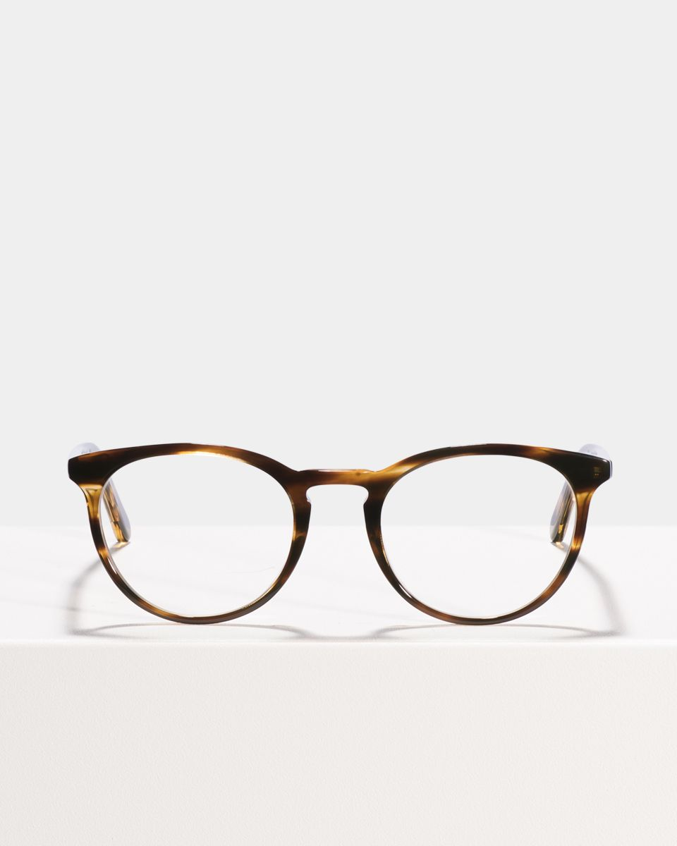 Floyd round acetate glasses in Tiger Wood by Ace & Tate