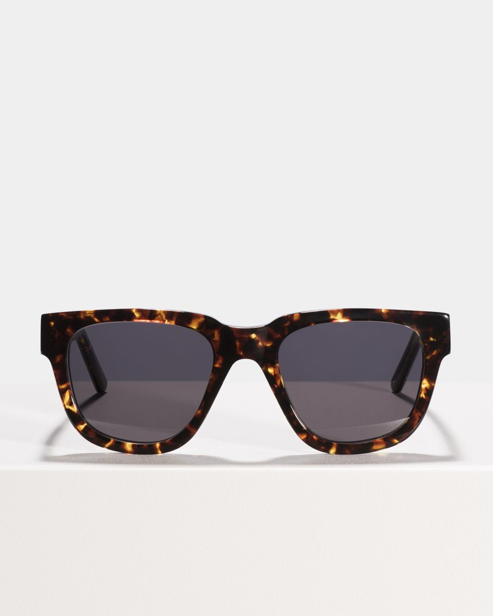 Harry rund Acetat glasses in Chestnut Tortoise by Ace & Tate