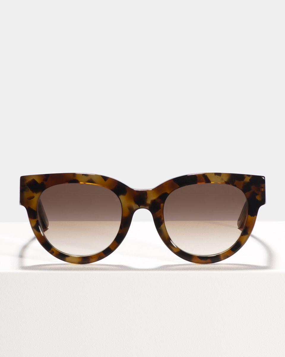 Heather round acetate glasses in On the Rocks by Ace & Tate