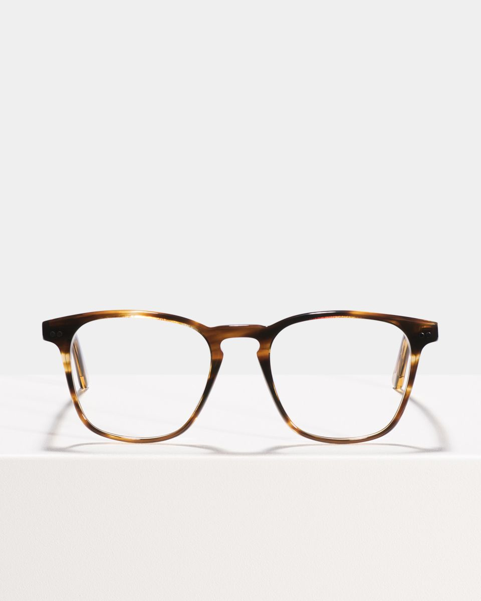 Hudson carrée acétate glasses in Tiger Wood by Ace & Tate