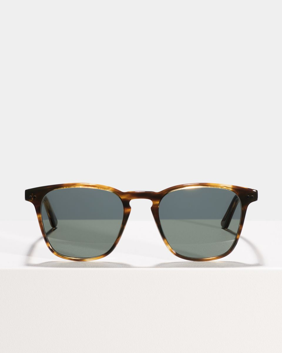 Hudson quadratisch Acetat glasses in Tiger Wood by Ace & Tate