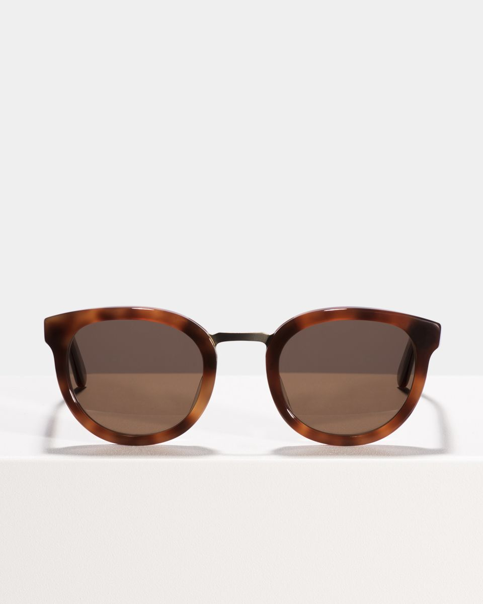Hugo rund Acetat glasses in Desert Spice by Ace & Tate