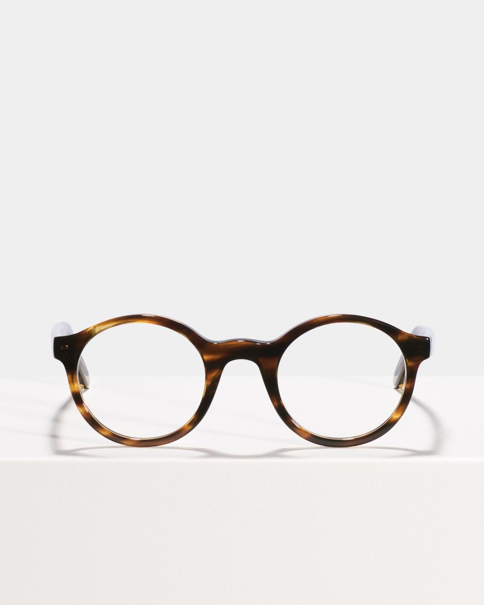 Jamie round acetate glasses in Tiger Wood by Ace & Tate