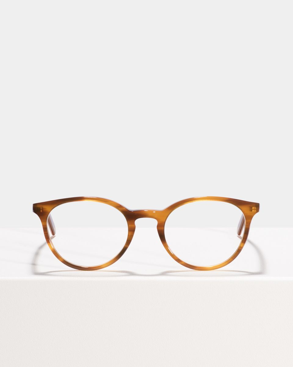 Max round acetate glasses in Alderwood by Ace & Tate