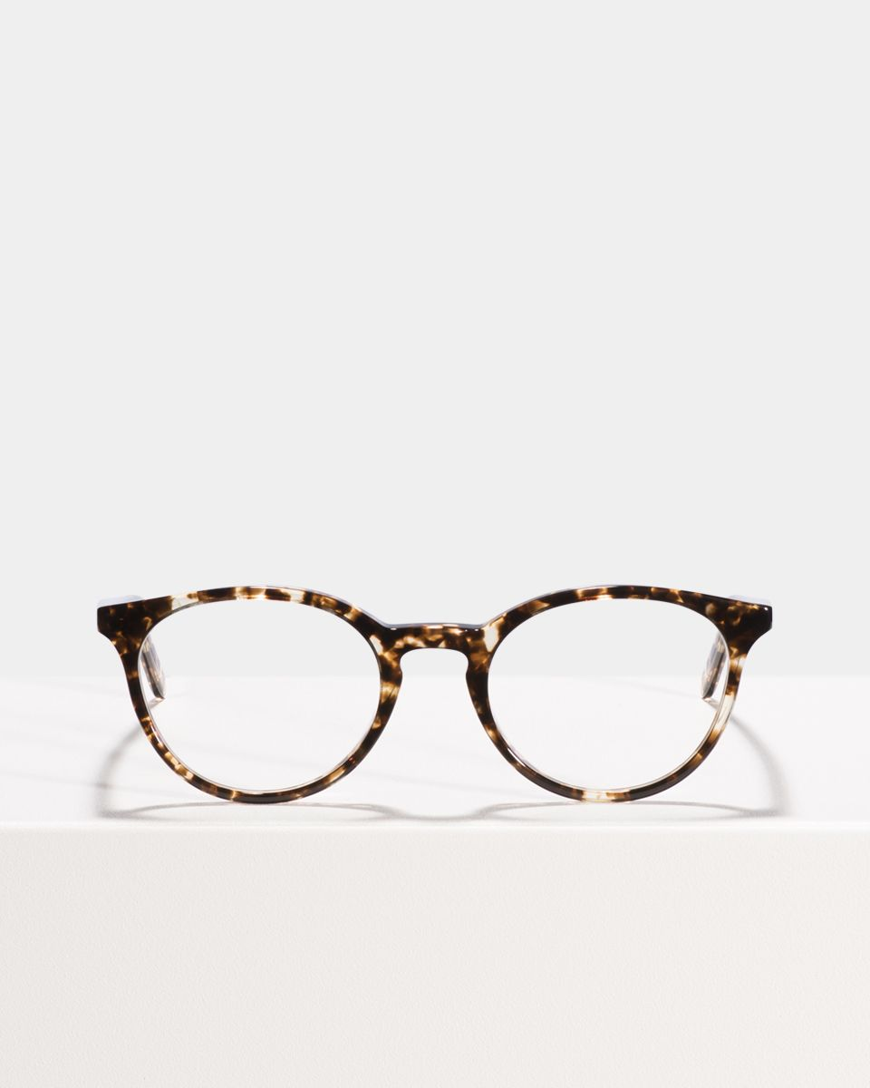 Max round acetate glasses in Chocolate Chip by Ace & Tate