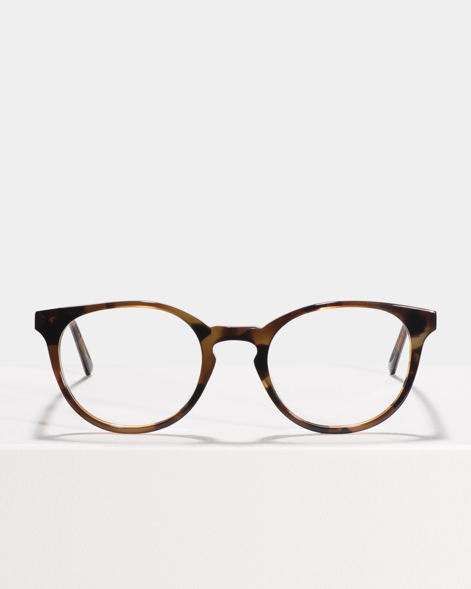 Miles Large round acetate glasses in On the Rocks by Ace & Tate