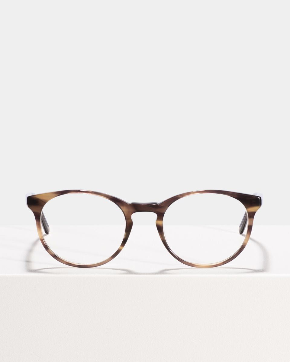 Miles ronde acétate glasses in Taupe Tortoise by Ace & Tate