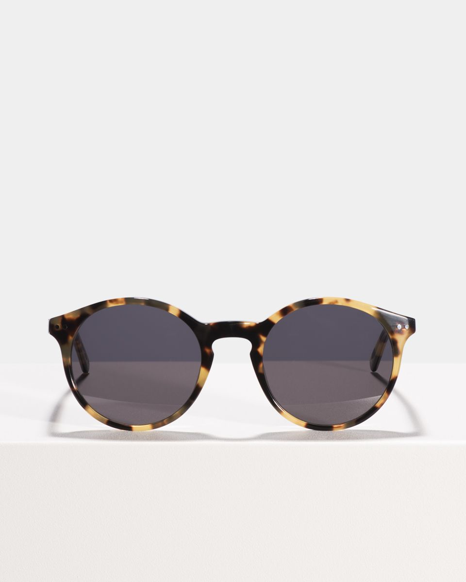 Monty round acetate glasses in Bananas by Ace & Tate