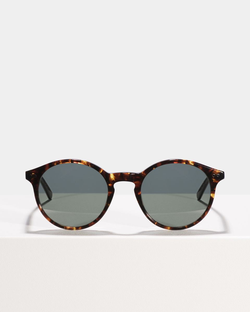 Monty round acetate glasses in Chestnut Tortoise by Ace & Tate