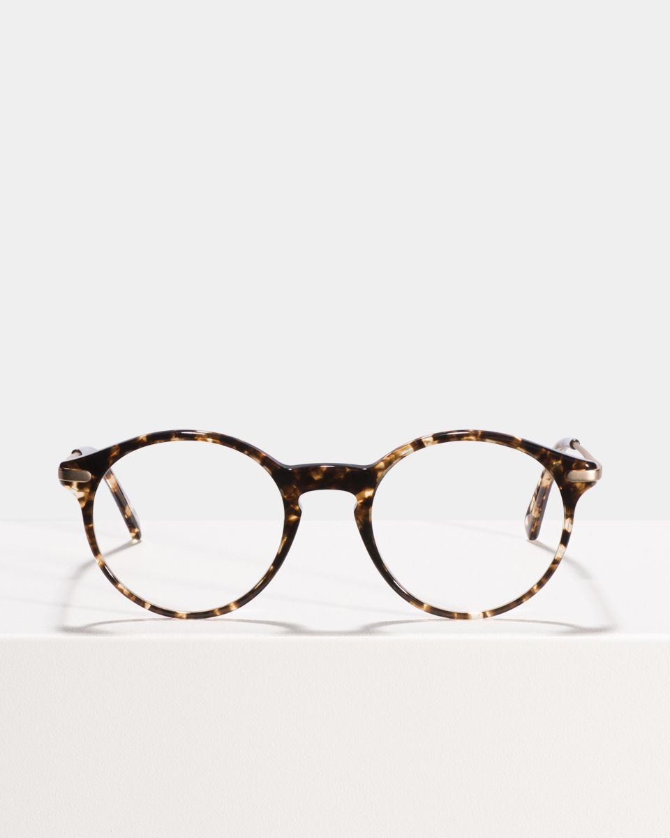 Monty Metal Temple round combi glasses in Chocolate Chip by Ace & Tate
