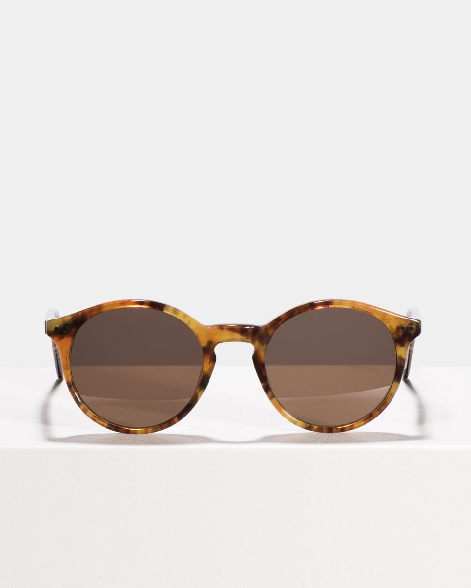 Monty acetate glasses in Indian Summer by Ace & Tate