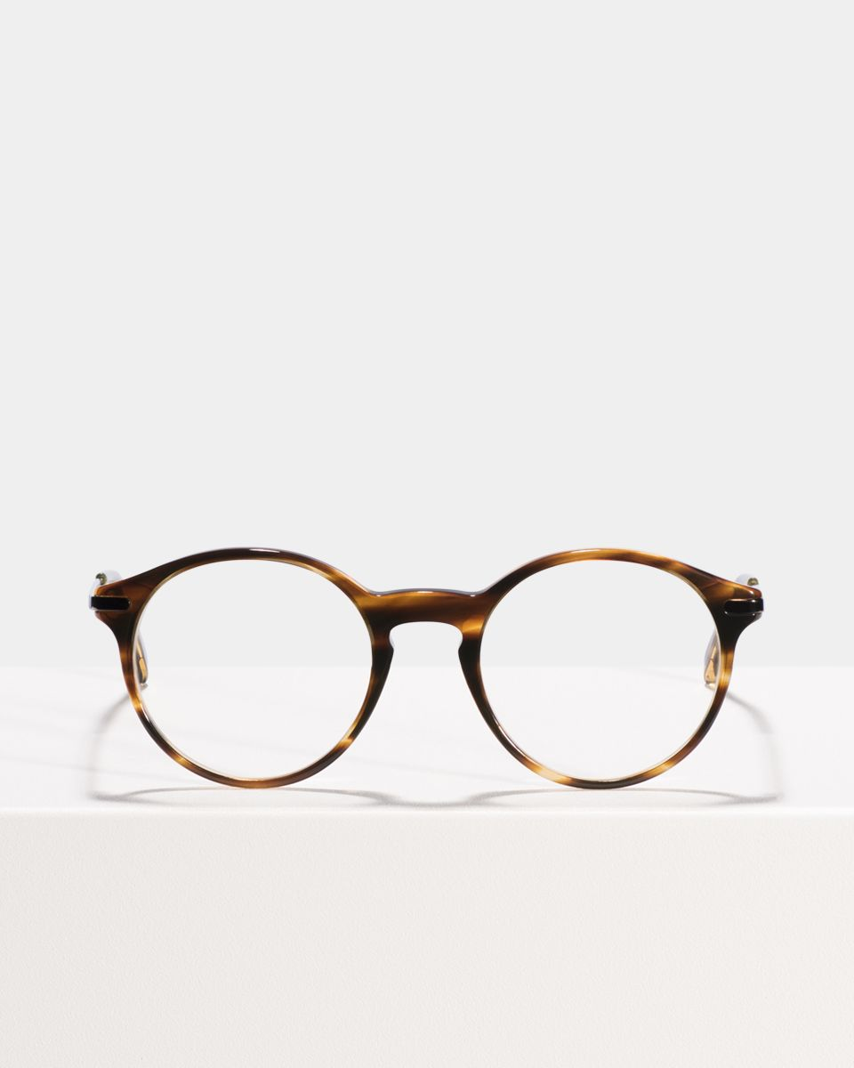 Monty Metal Temple round combi glasses in Tiger Wood by Ace & Tate