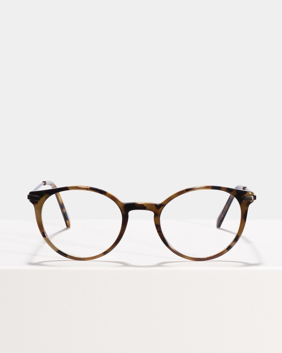 Morris ronde combinaison glasses in On the Rocks by Ace & Tate