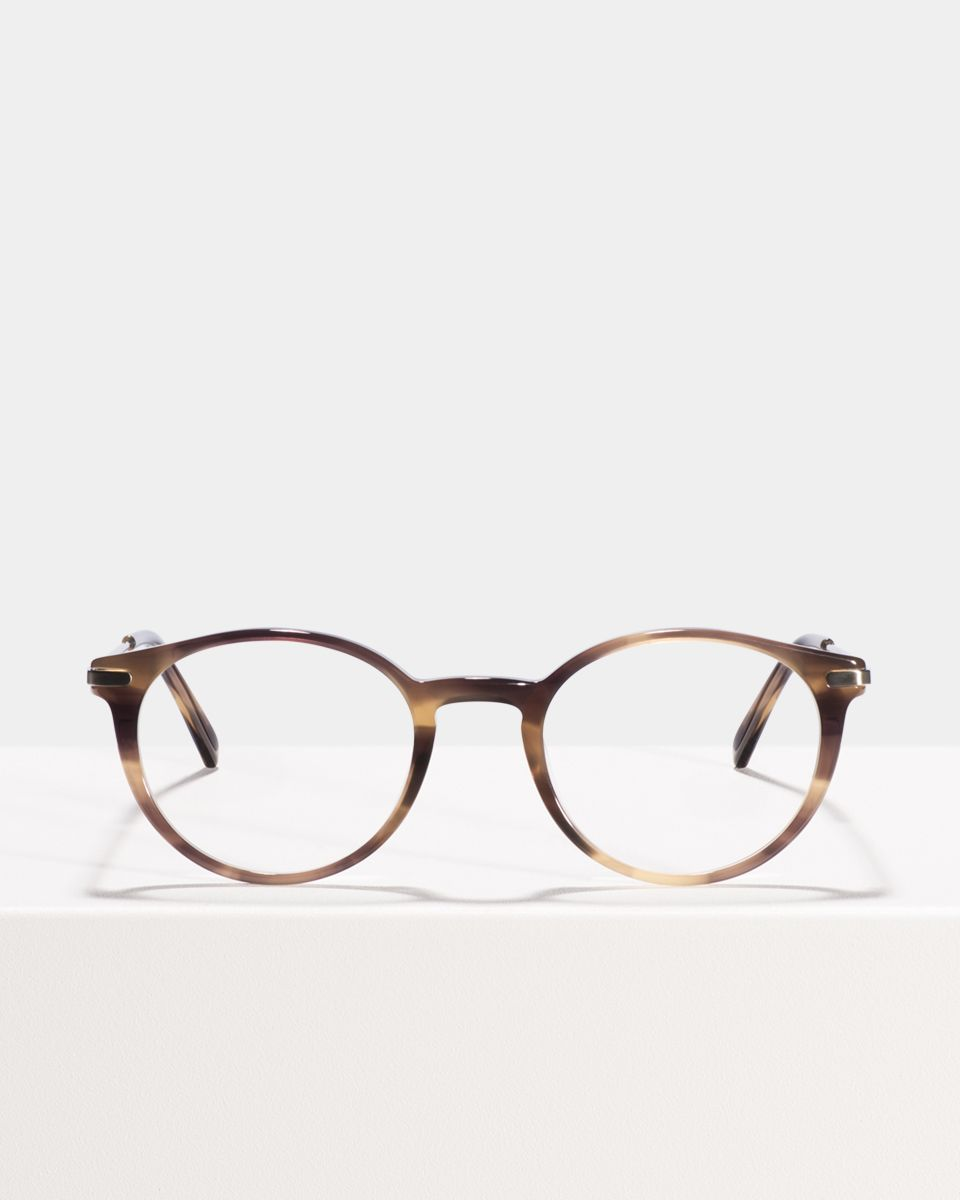 Morris rund metal,combi glasses in Taupe Tortoise by Ace & Tate