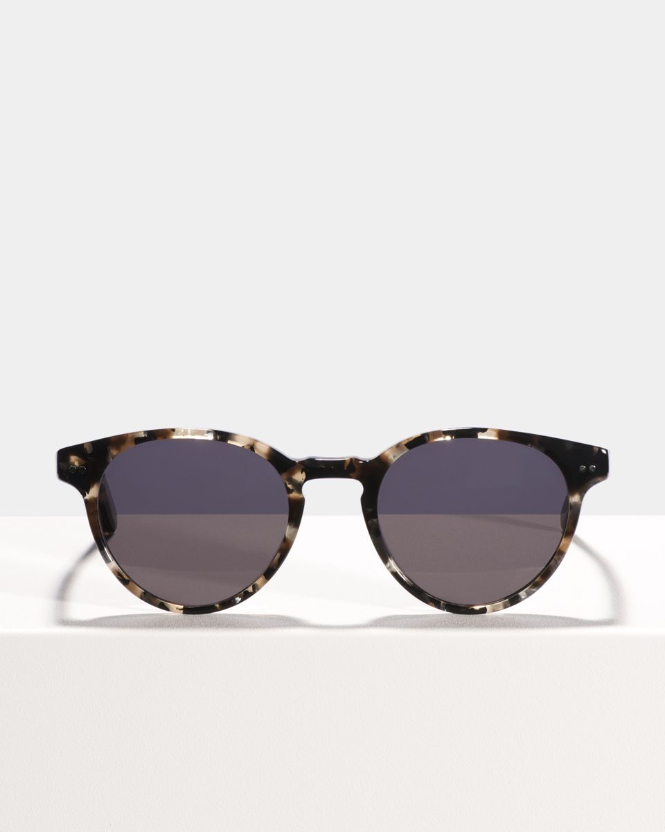 Pierce Large round acetate glasses in Moraine by Ace & Tate