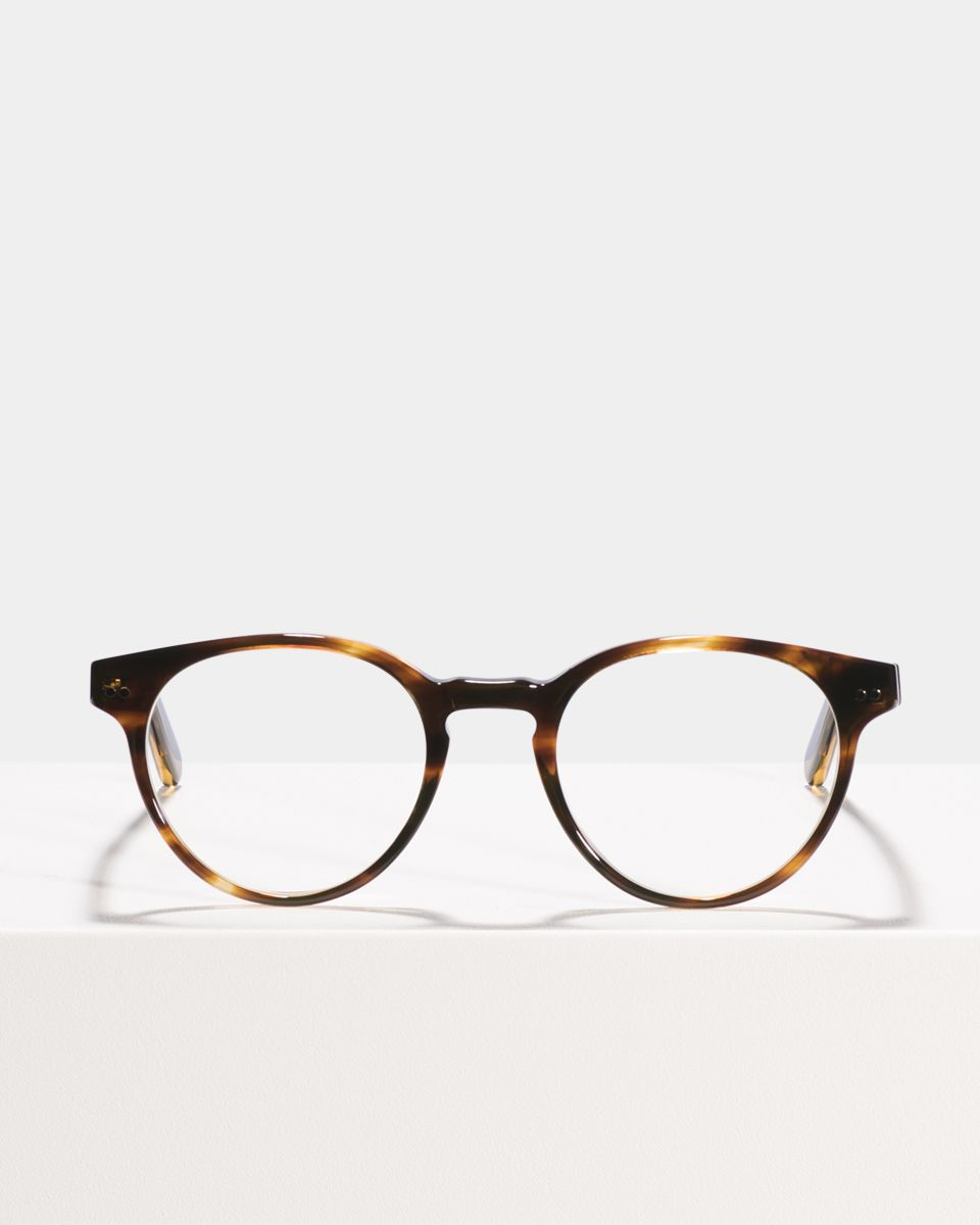 Pierce Large round acetate glasses in Tiger Wood by Ace & Tate