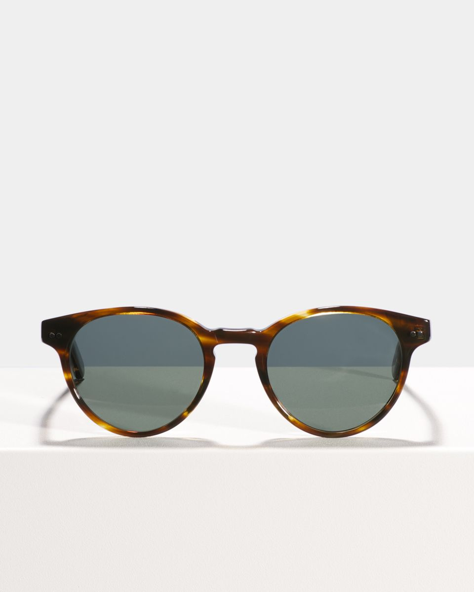 Pierce Large Acetat glasses in Tigerwood by Ace & Tate