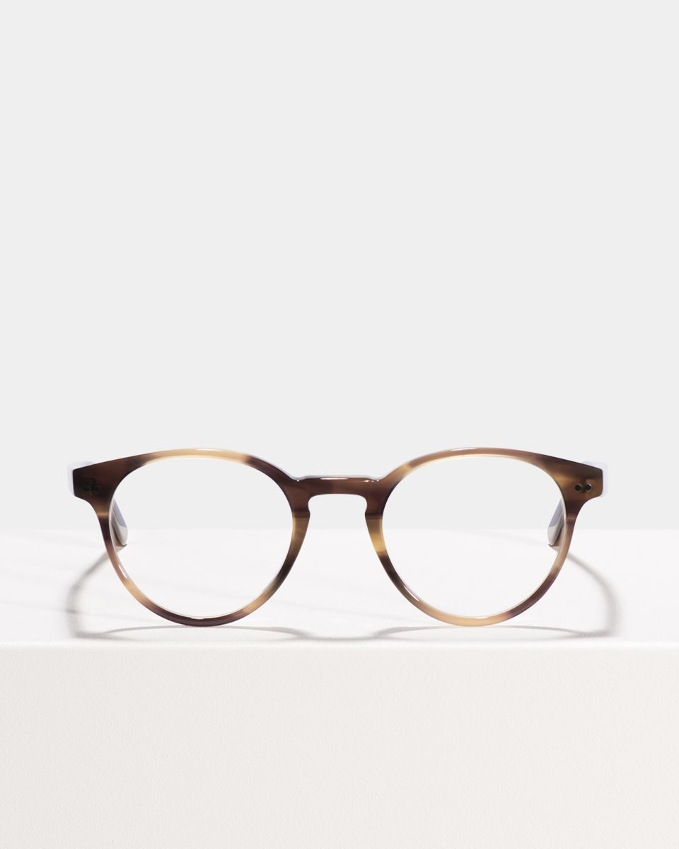 Pierce ronde acétate glasses in Taupe Tortoise by Ace & Tate