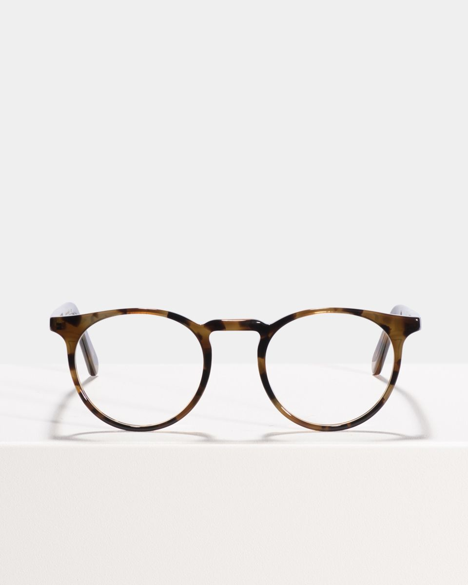 Roth round acetate glasses in On the Rocks by Ace & Tate
