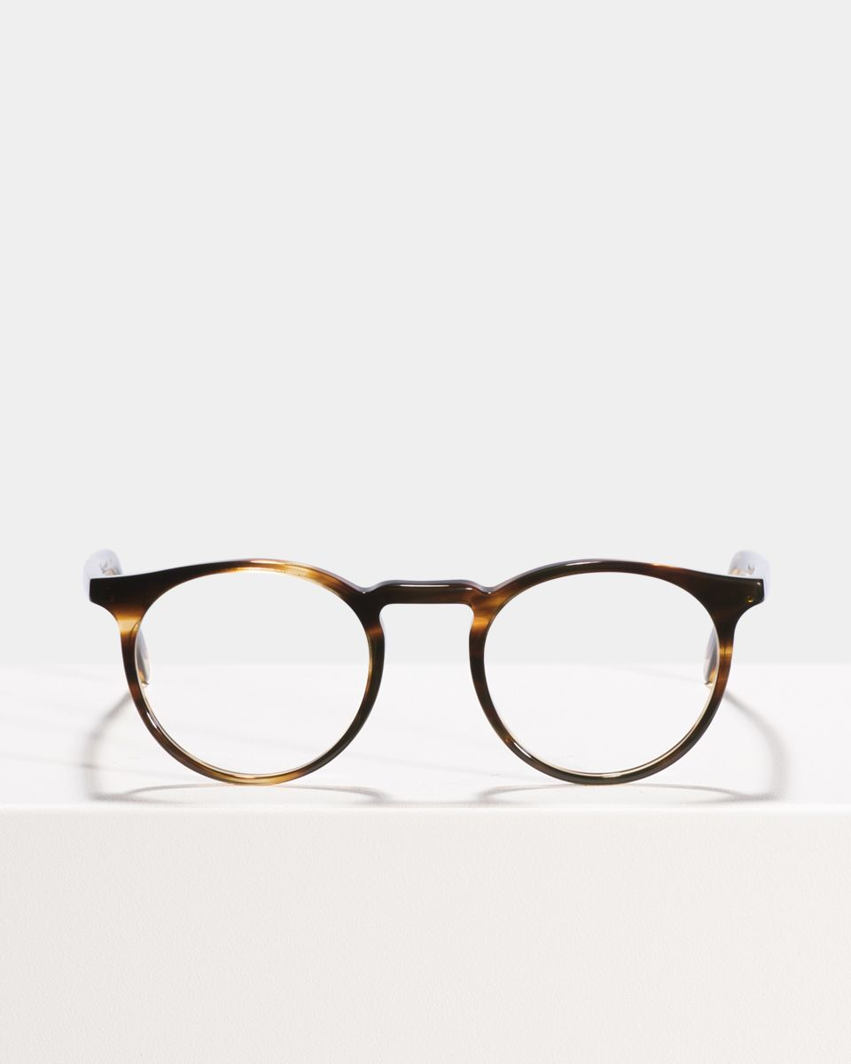 Roth round acetate glasses in Tiger Wood by Ace & Tate