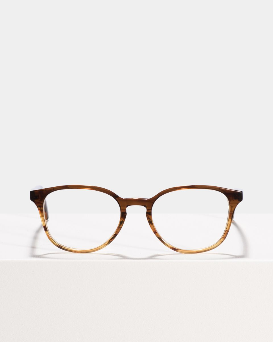 Ryan rond acetaat glasses in Chocolate Havana Fade by Ace & Tate