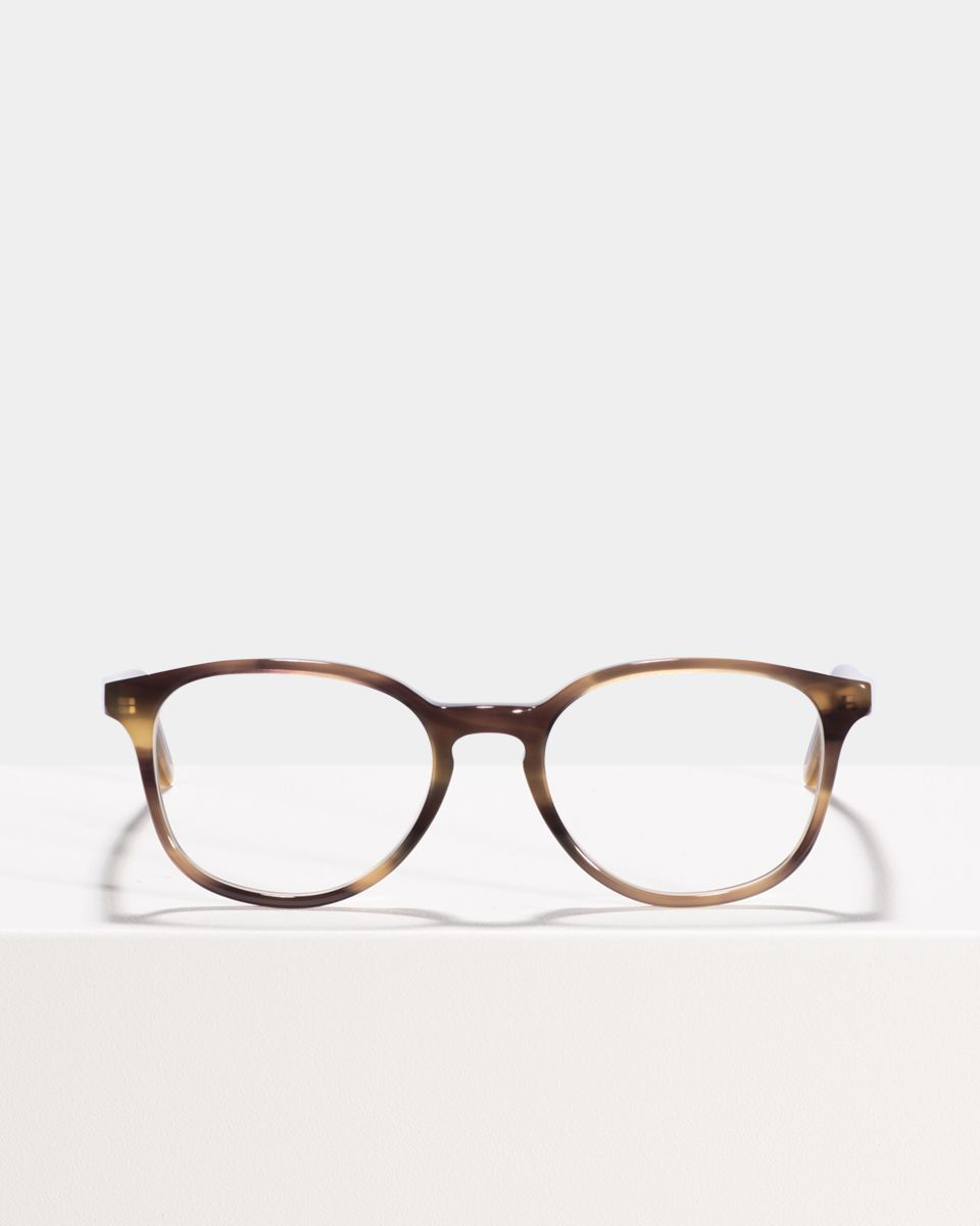 Ryan rund Acetat glasses in Taupe Tortoise by Ace & Tate