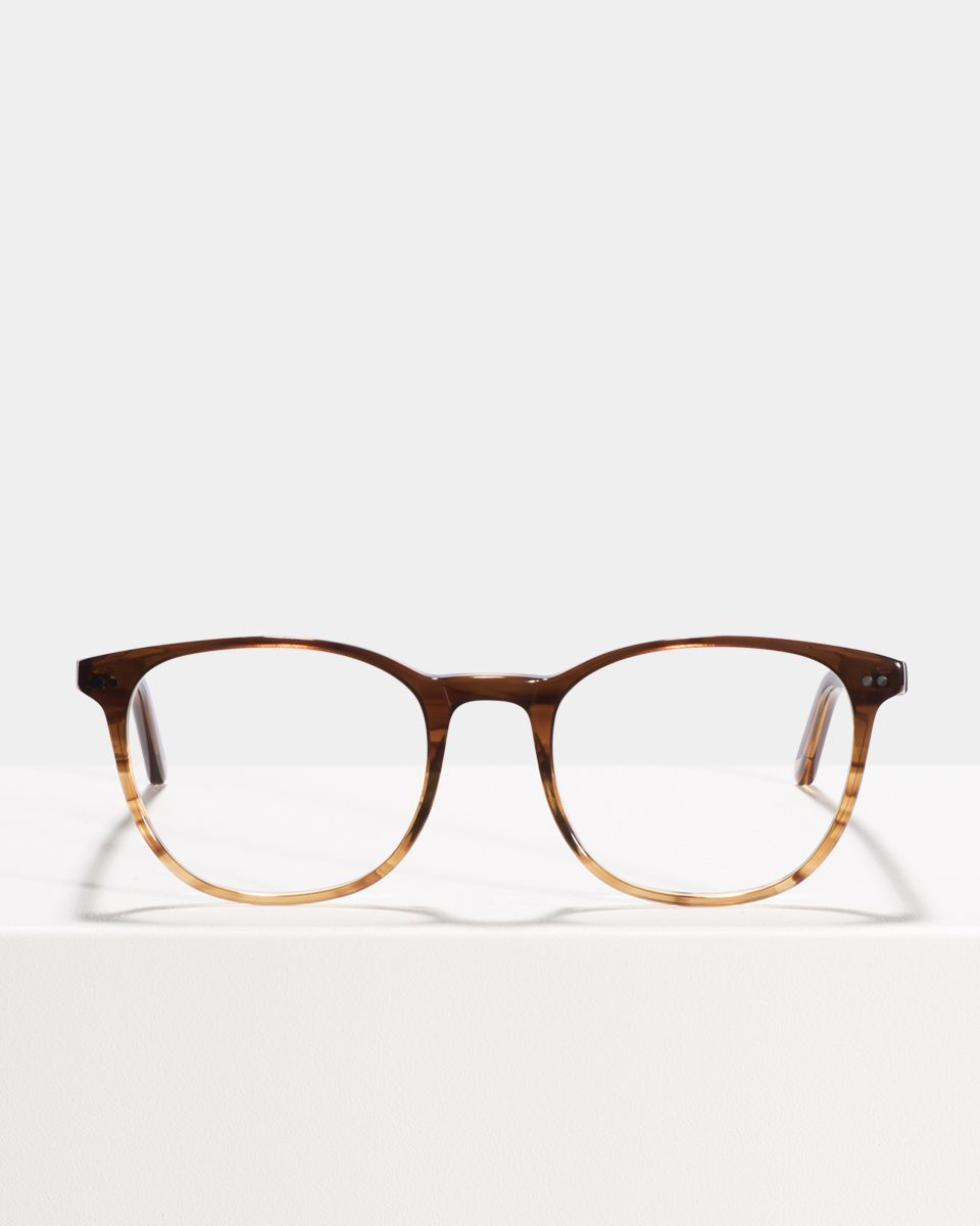 Saul acetate glasses in Chocolate Havana Fade by Ace & Tate