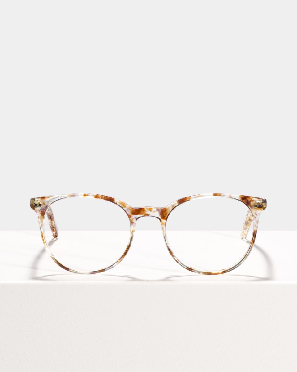 Wes rund Acetat glasses in Gold Dust by Ace & Tate