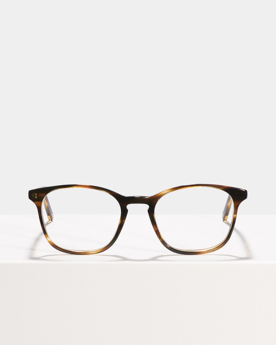 Wilson square acetate glasses in Tiger Wood by Ace & Tate