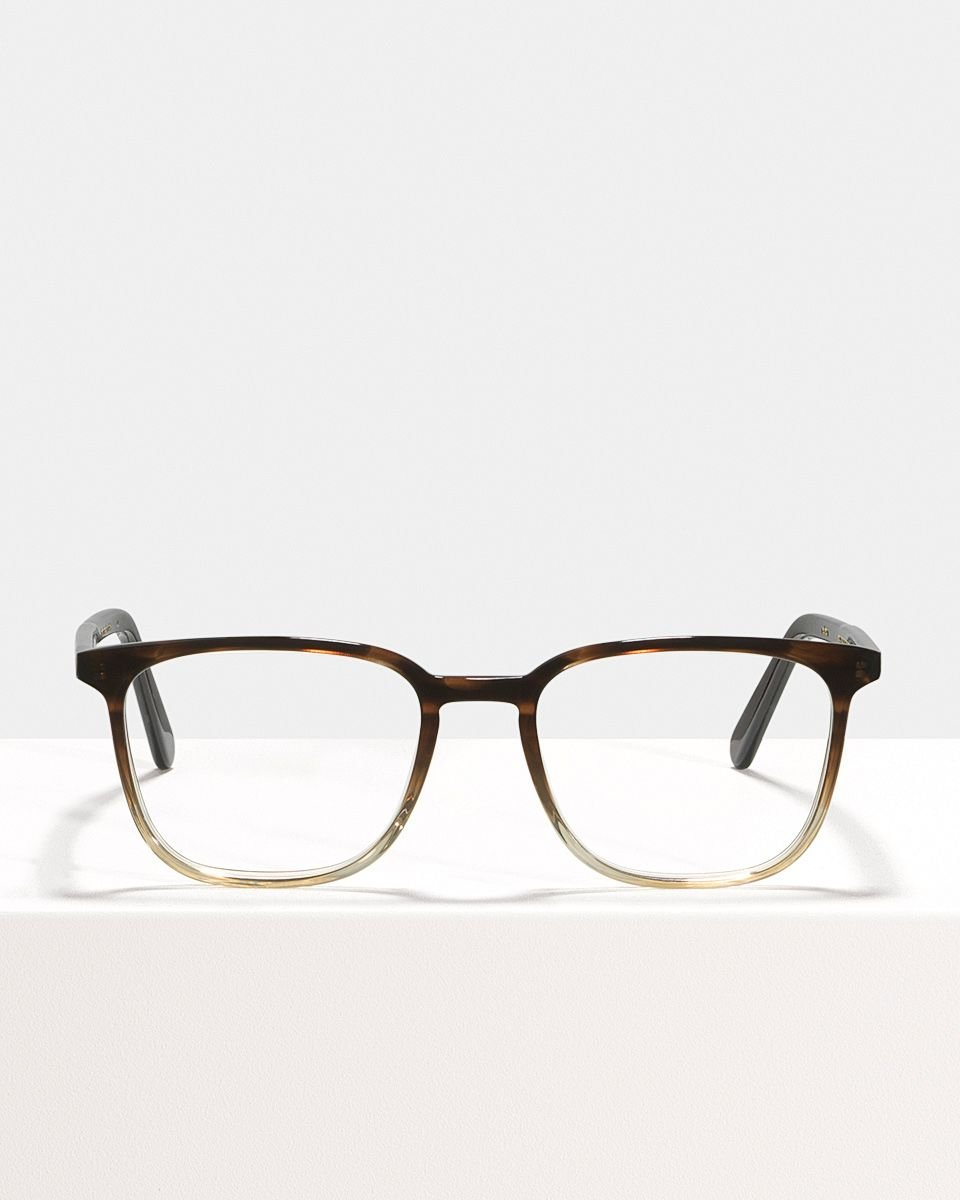 Nelson acetate glasses in Espresso Gradient by Ace & Tate