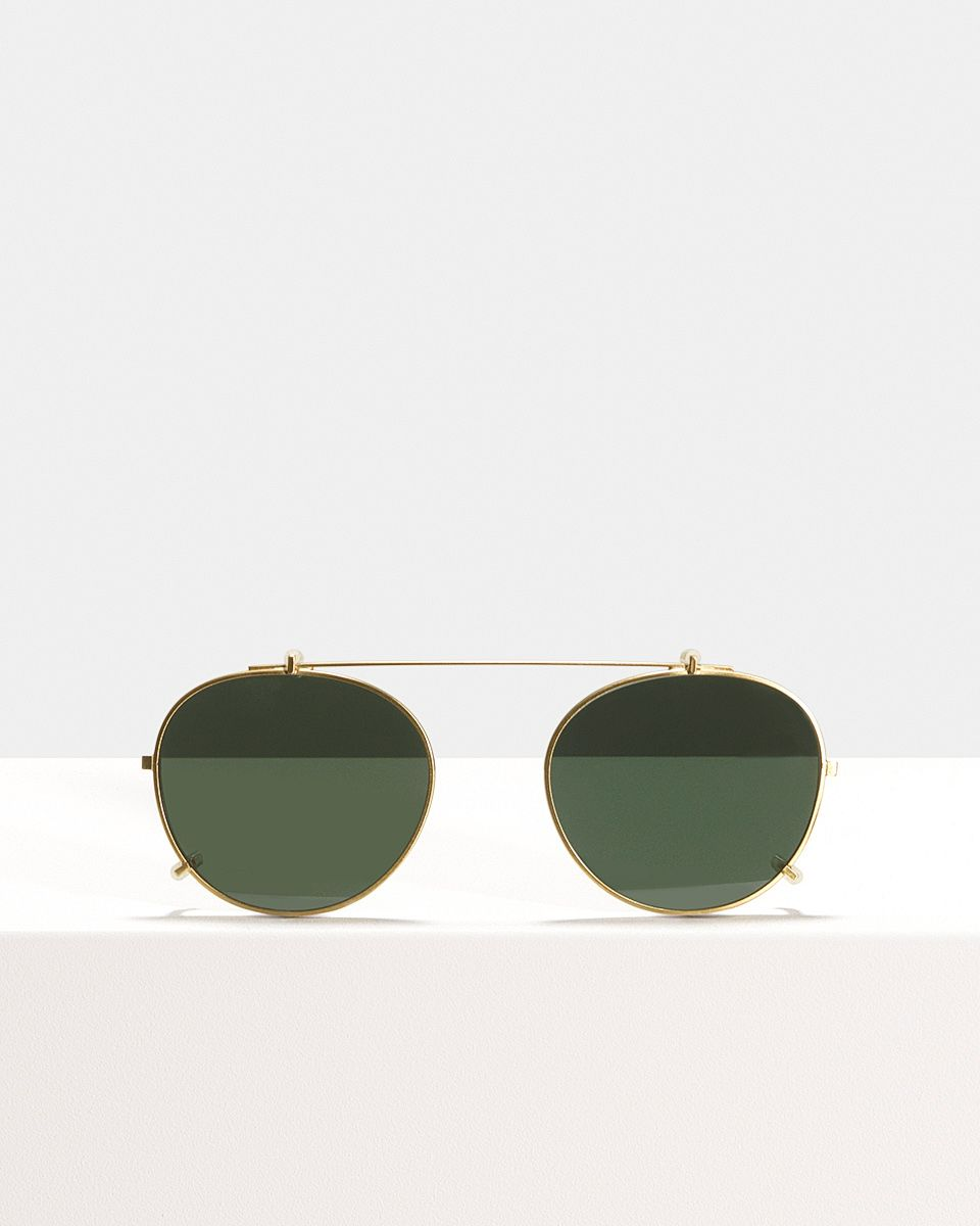 Max clip-on   glasses in Satin Gold by Ace & Tate