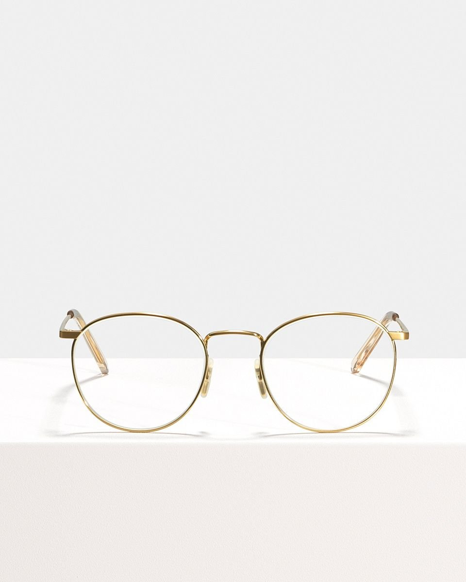 Neil Titanium titanio glasses in Satin Gold by Ace & Tate