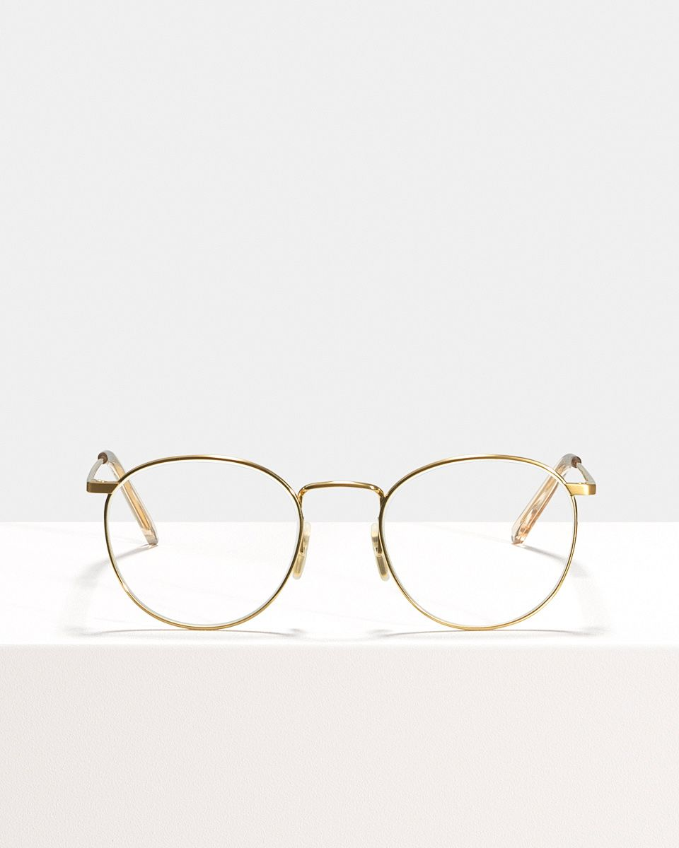Neil Titanium rondes titane glasses in Satin Gold by Ace & Tate