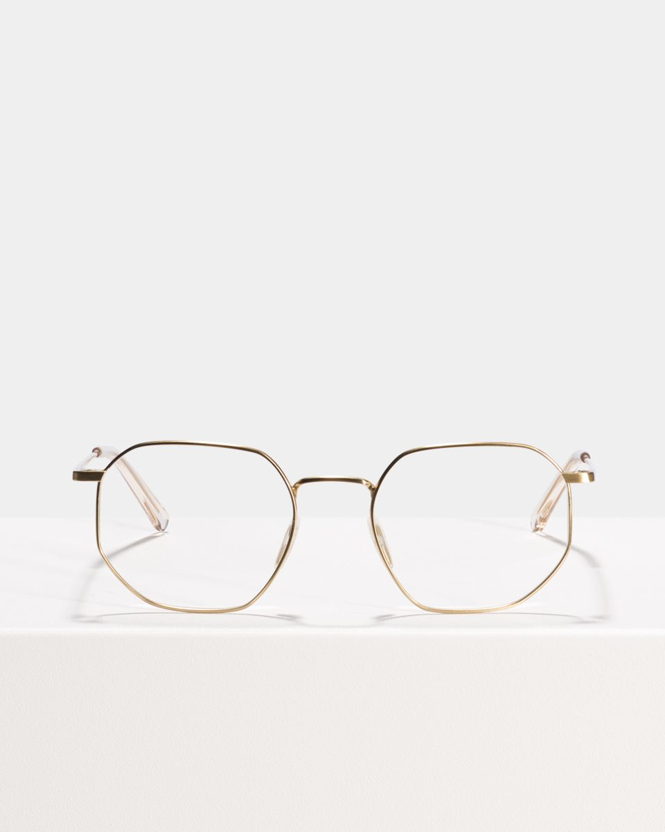Robert Titanium round titanium glasses in Satin Gold by Ace & Tate