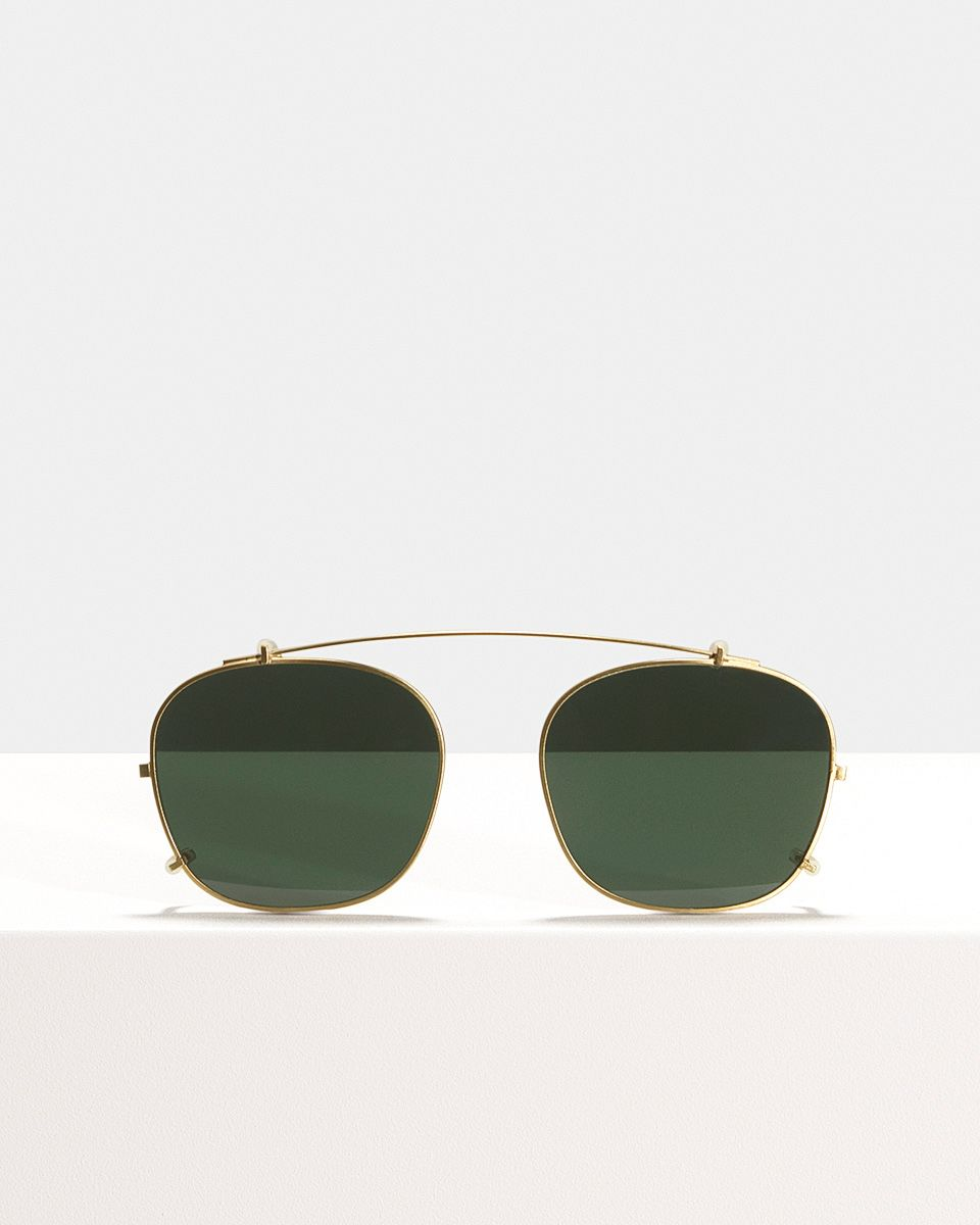 Wilson clip-on   glasses in Satin Gold by Ace & Tate