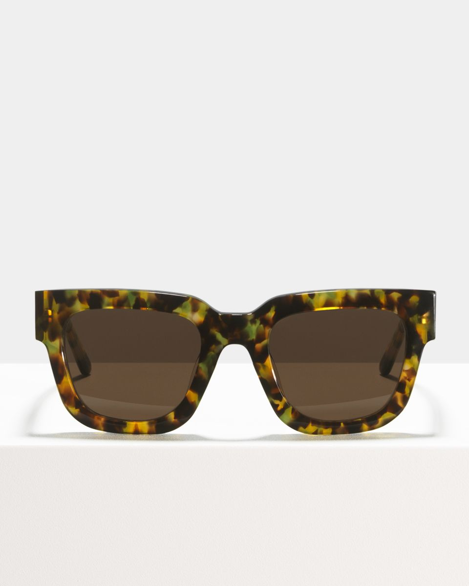 Allen rund Acetat glasses in Chameleon by Ace & Tate