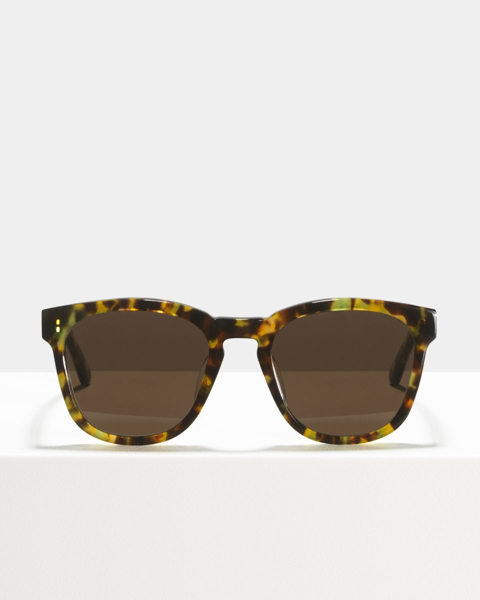 Dexter square acetate glasses in Chameleon by Ace & Tate