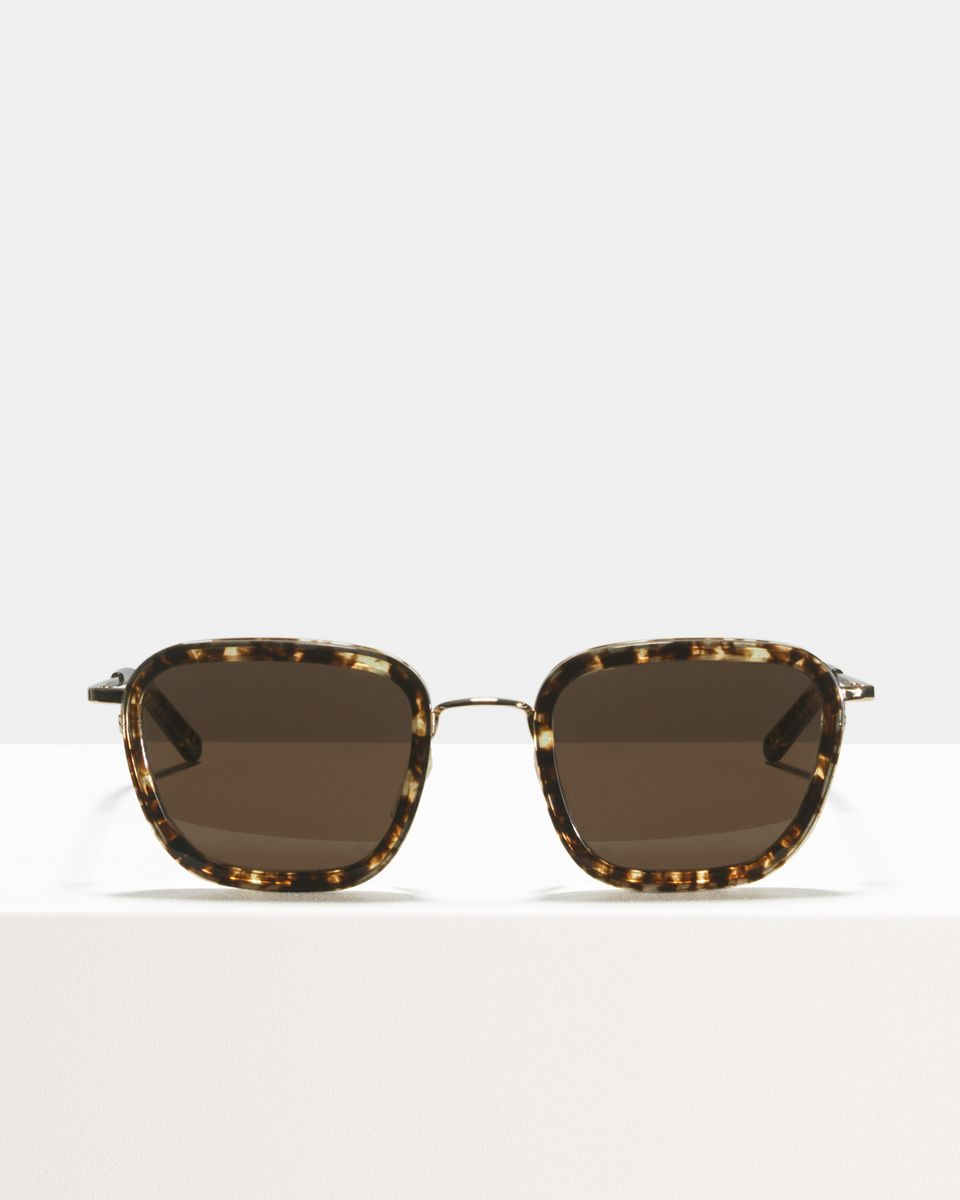 Ringo quadratisch Verbund glasses in Chocolate Chip by Ace & Tate