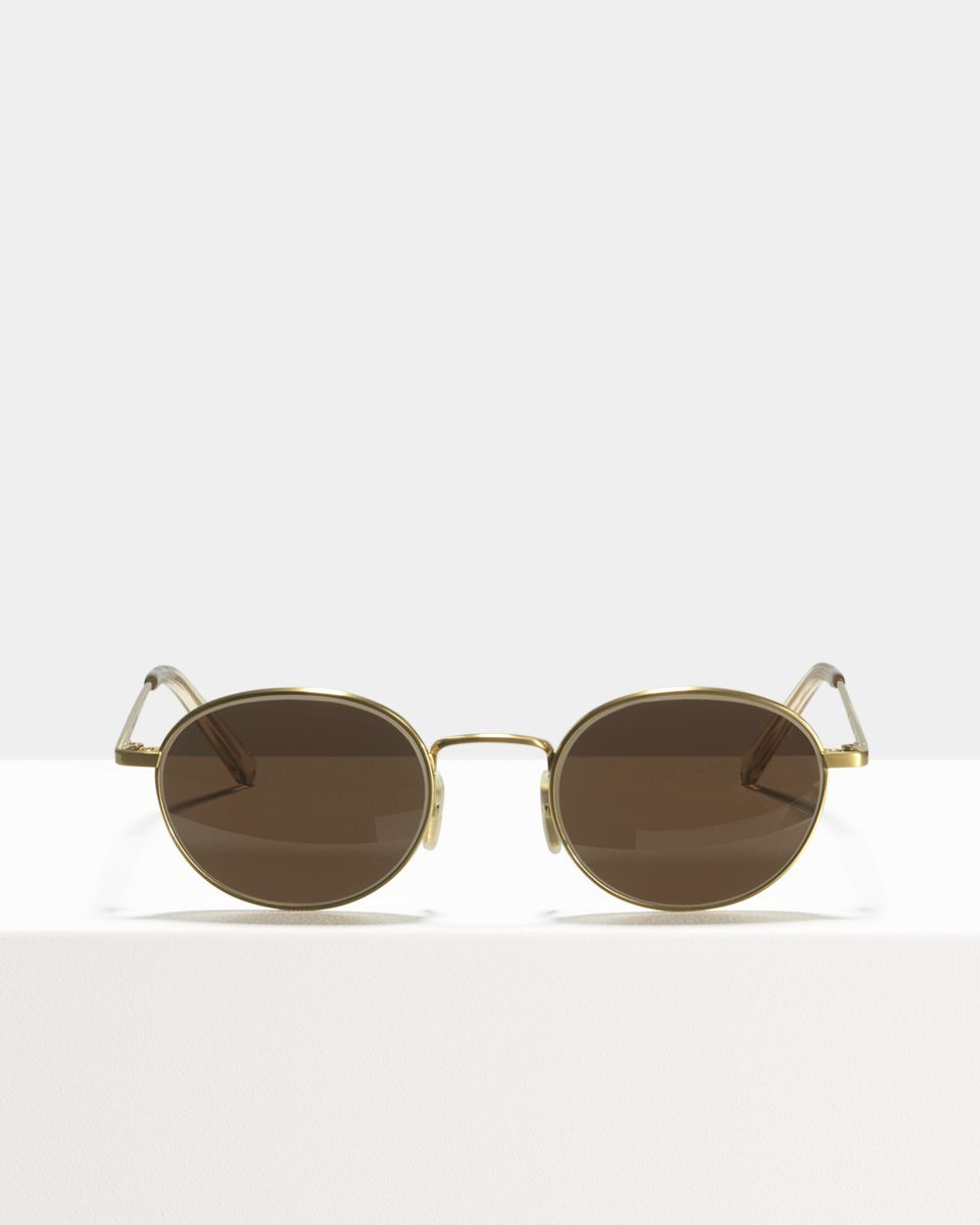 Patti Titanium oval Titanium glasses in Satin Gold by Ace & Tate
