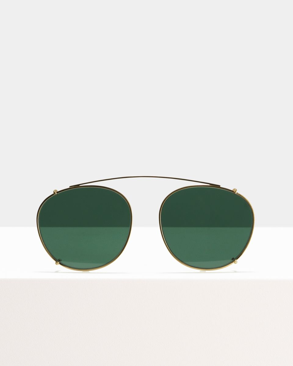 Neil Large clip-on   glasses in Satin Gold by Ace & Tate