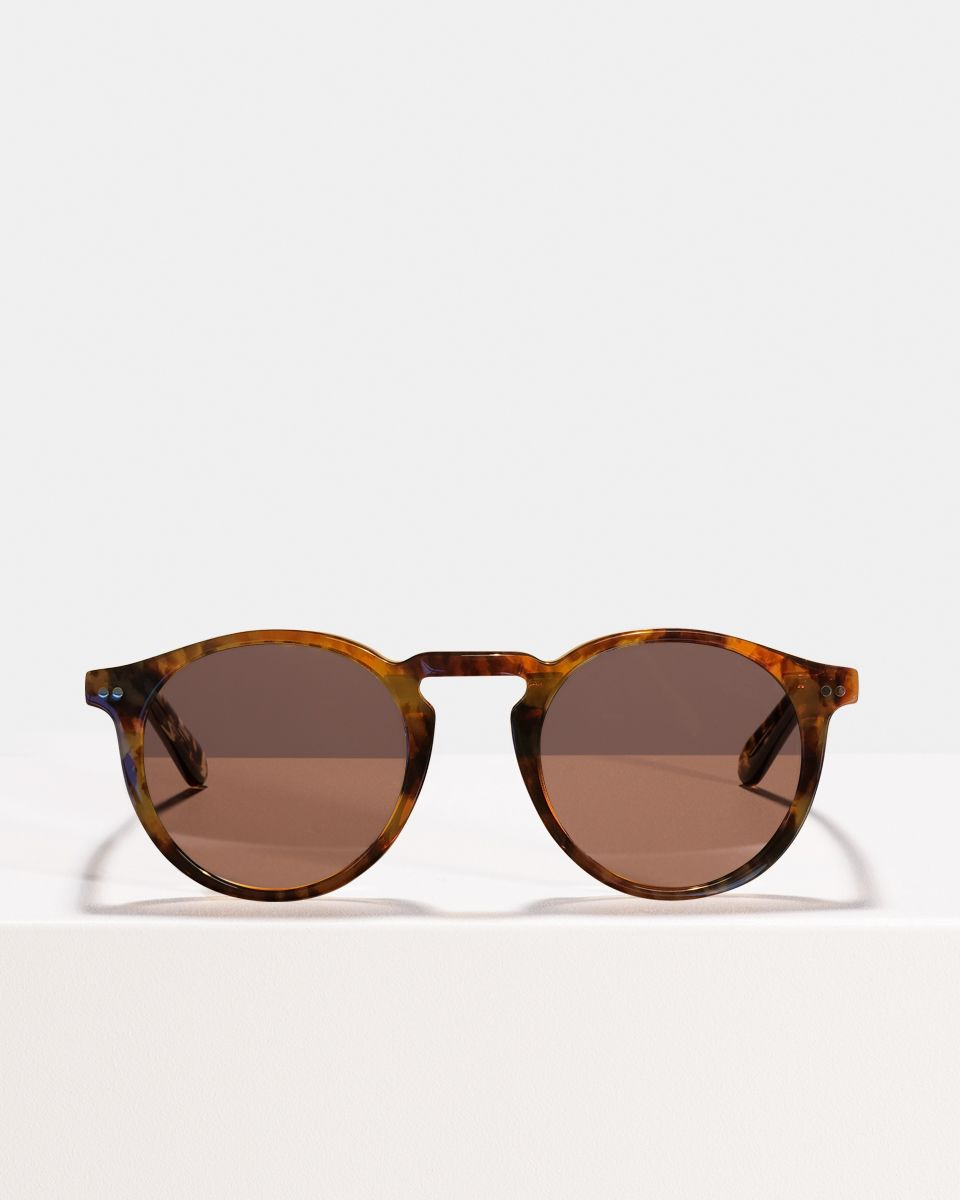 Benjamin round acetate glasses in Indian Summer by Ace & Tate