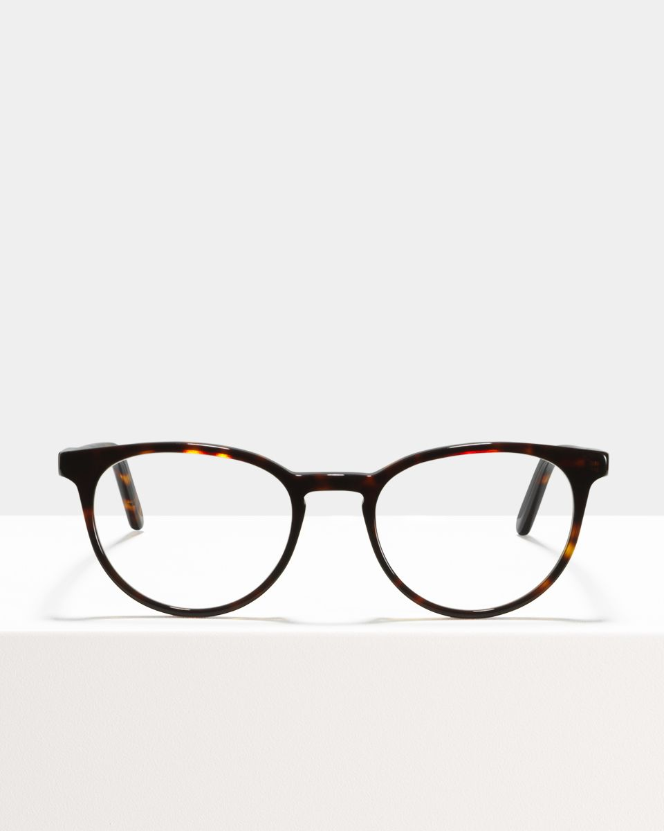 Damien round acetate glasses in Hazelnut Tortoise by Ace & Tate